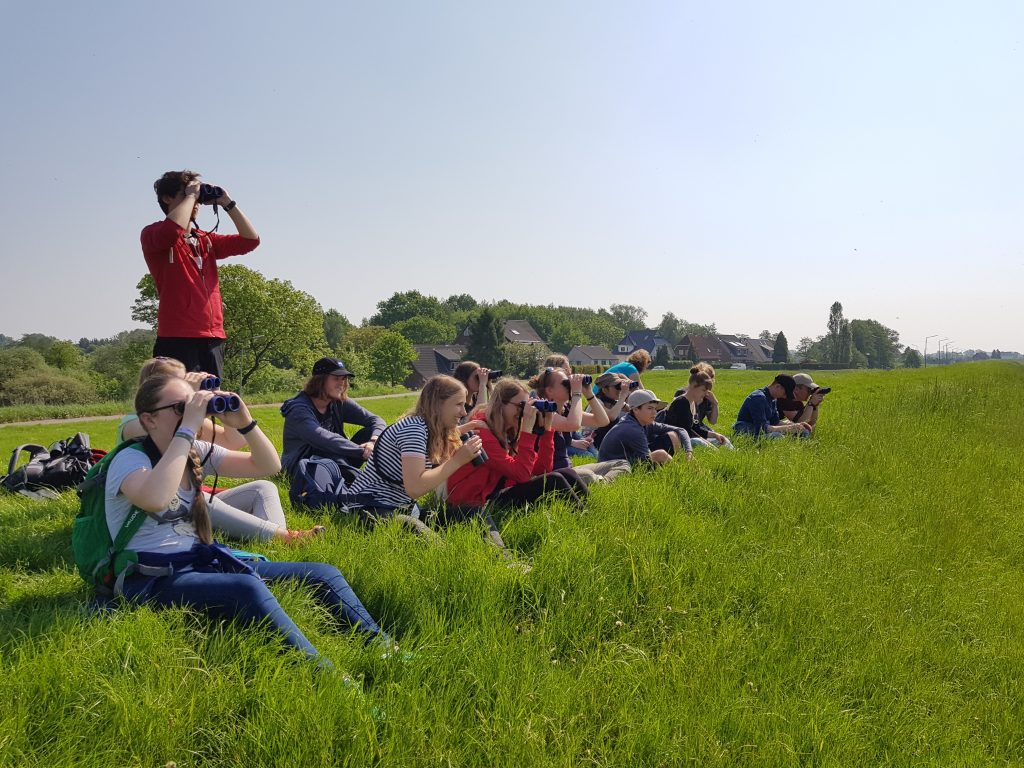 Bild Freizeit NAJU im NABU – Aktionsplattform Vogelzug