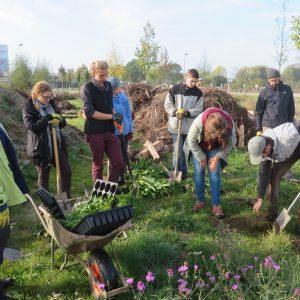 2047Pflegeeinsatz im Naturgarten Bayreuth