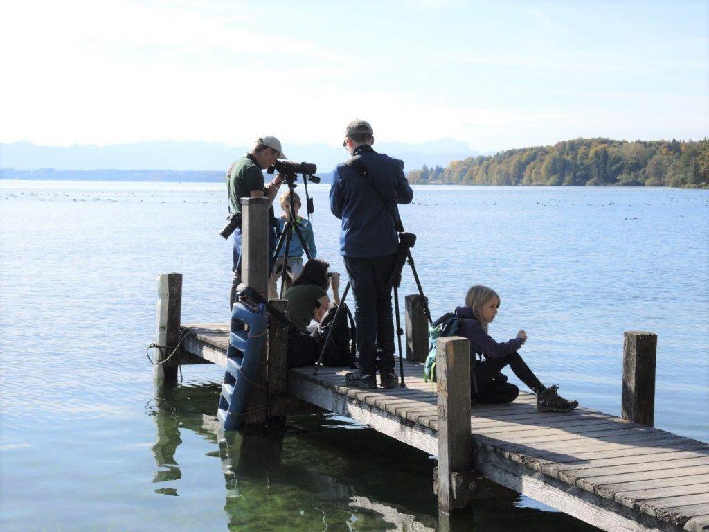 Bild Freizeit Wasservogelbeobachtung